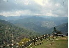 Concurso de Fotografía de Naturaleza en Cazorla